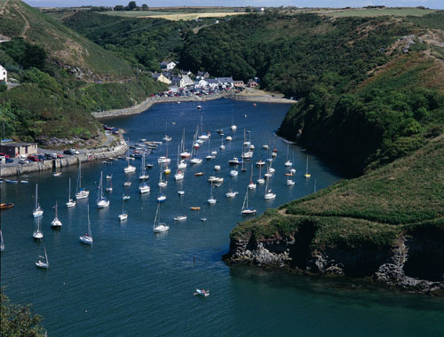 Pembrokeshire Coast Bed and Breakfast